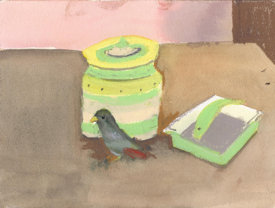 Parrot on the Table Mixed media- watercolour:pastel 17cm x 24 cm unframed
